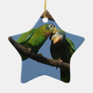Miscellaneous - Amazon Parrot & KIS Pattern Double-Sided Star Ceramic Christmas Ornament