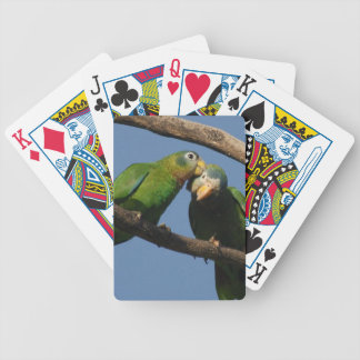 Miscellaneous - Amazon Parrot & KIS Pattern Bicycle Playing Cards