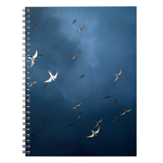 Miscellaneous - Arctic Tern & Blue Sky Pattern Notebook