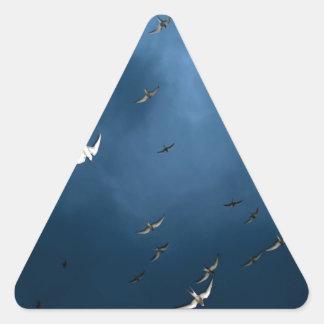 Miscellaneous - Arctic Tern & Blue Sky Pattern Triangle Sticker