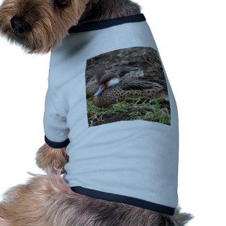 Miscellaneous - Bahama Pintail & Grass Pattern Camiseta Con Mangas Para Perro