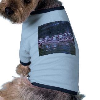 Miscellaneous - Bahama Pintail Nature Pattern Camiseta Con Mangas Para Perro