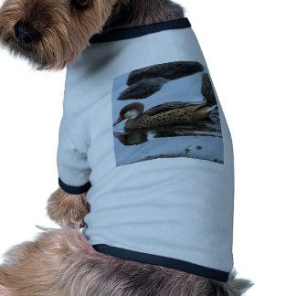 Miscellaneous - Bahama Pintail & Rocks Pattern Camiseta Con Mangas Para Perro