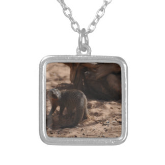 Miscellaneous - Banded Mongoose Pattern Square Pendant Necklace