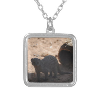 Miscellaneous - Banded Mongoose - Shadows & Light Square Pendant Necklace