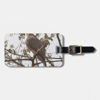 Miscellaneous - Bare-Faced Go-Away-Bird & Branch Bag Tags