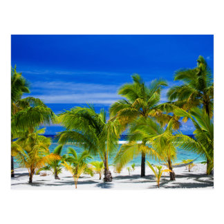 Miscellaneous - Beach & Palm Trees Furnace Postcard