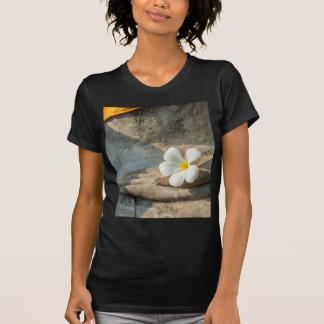 Miscellaneous - Bhudda Ten T-Shirt