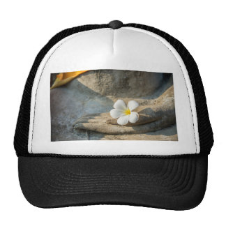 Miscellaneous - Bhudda Ten Trucker Hat