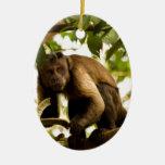 Miscellaneous - Black-Capped Capuchin & Branch Adorno Navideño Ovalado De Cerámica