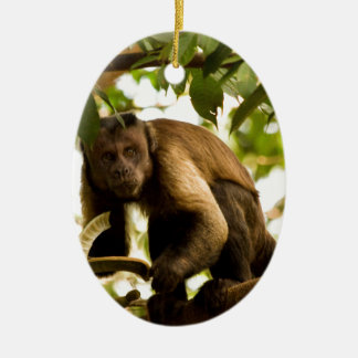 Miscellaneous - Black-Capped Capuchin & Branch Ceramic Ornament