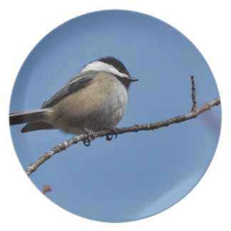 Miscellaneous - Black-Capped Chickadee & Branch Party Plate