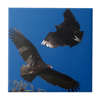 Miscellaneous - Black Vulture & Blue Sky Pattern Small Square Tile