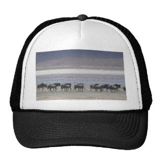 Miscellaneous - Blue Wildebeest & Pattern Horizon Trucker Hat