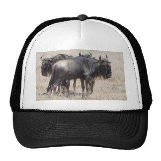 Miscellaneous - Blue Wildebeest Pattern Portrait Trucker Hat