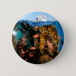 Miscellaneous - Boat & Coral Reef Patterns Three Pinback Button