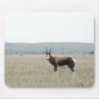 Miscellaneous - Bontebok & Nature Pattern Mouse Pad