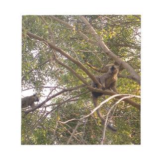 Miscellaneous - Brown Lemur Pattern