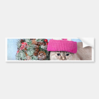 Miscellaneous - Cat With Woolly Hat Five Bumper Sticker