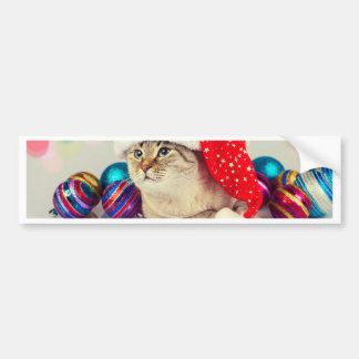 Miscellaneous - Cat With Woolly Hat Furnace Bumper Sticker