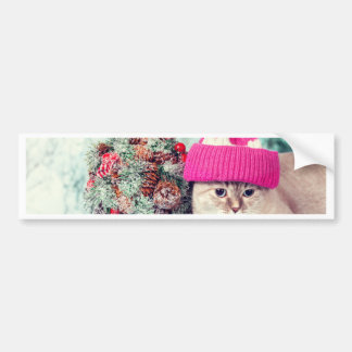 Miscellaneous - Cat With Woolly Hat Nine Bumper Sticker