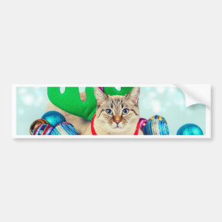 Miscellaneous - Cat With Woolly Hat One Bumper Sticker