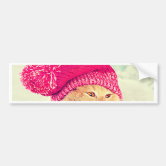 Miscellaneous - Cat With Woolly Hat Six Bumper Sticker