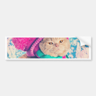 Miscellaneous - Cat With Woolly Hat Two Bumper Sticker