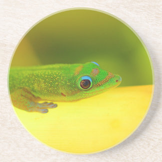Miscellaneous - Colorful Bent-Toed Gecko Pattern Coaster