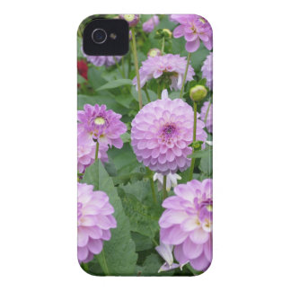 Miscellaneous - Dahlias Patterns Forty-Seven iPhone 4 Cover