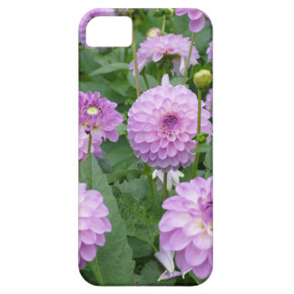 Miscellaneous - Dahlias Patterns Forty-Seven iPhone SE/5/5s Case