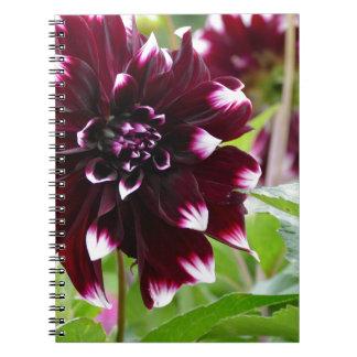 Miscellaneous - Dahlias Patterns Fourteen Notebook
