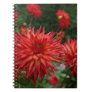 Miscellaneous - Dahlias Patterns Twenty-One Notebook