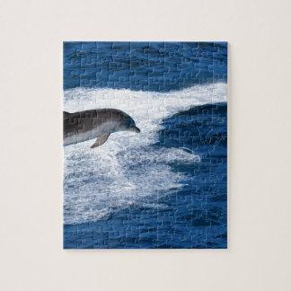 Miscellaneous - Dolphins Jump Eleven Puzzle