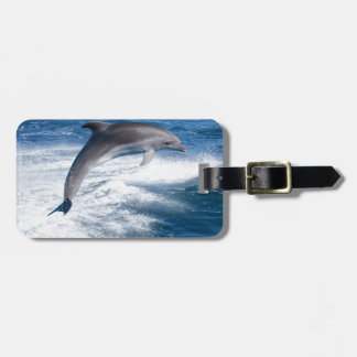 Miscellaneous - Dolphins Jump Fourteen Bag Tag