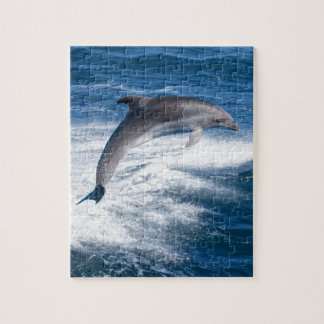 Miscellaneous - Dolphins Jump Fourteen Jigsaw Puzzle