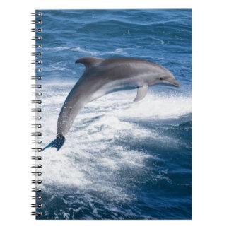 Miscellaneous - Dolphins Jump Fourteen Spiral Notebook