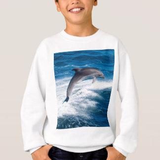 Miscellaneous - Dolphins Jump Fourteen Sweatshirt