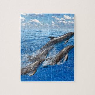 Miscellaneous - Dolphins Jump Nine Puzzle
