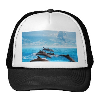 Miscellaneous - Dolphins Jump Seven Trucker Hat