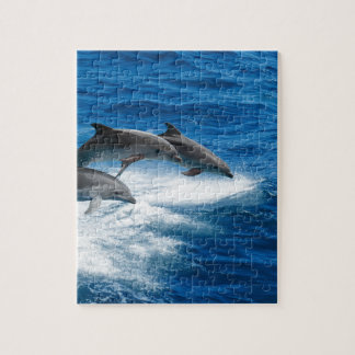 Miscellaneous - Dolphins Jump Thirteen Jigsaw Puzzle