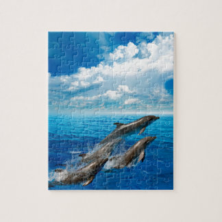 Miscellaneous - Dolphins Jump Three Puzzle