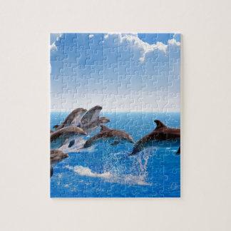 Miscellaneous - Dolphins Jump Twelve Puzzle