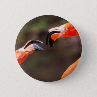 Miscellaneous - Flamingo Patterns Eight Pinback Button