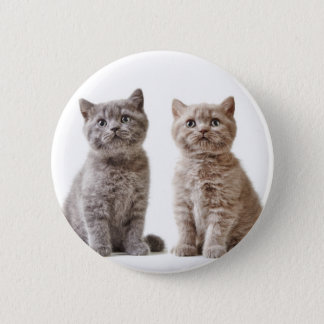 Miscellaneous - Lovely Kittens Eleven Button
