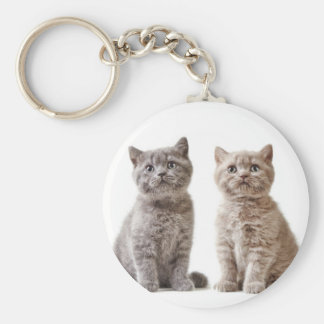 Miscellaneous - Lovely Kittens Eleven Keychain