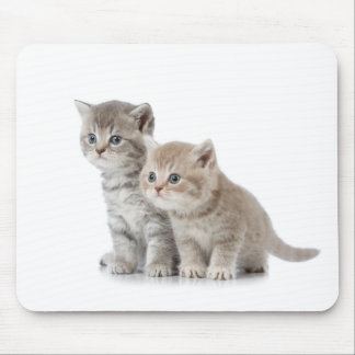 Miscellaneous - Lovely Kittens Ten Mouse Pad