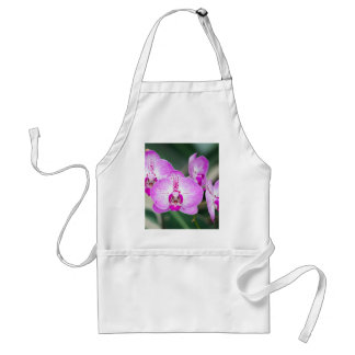 Miscellaneous - Orchid Patterns Seven Adult Apron