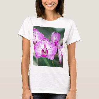 Miscellaneous - Orchid Patterns Seven T-Shirt