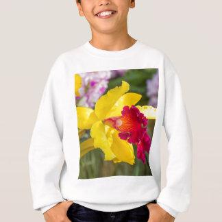 Miscellaneous - Orchid Patterns Twelve Sweatshirt